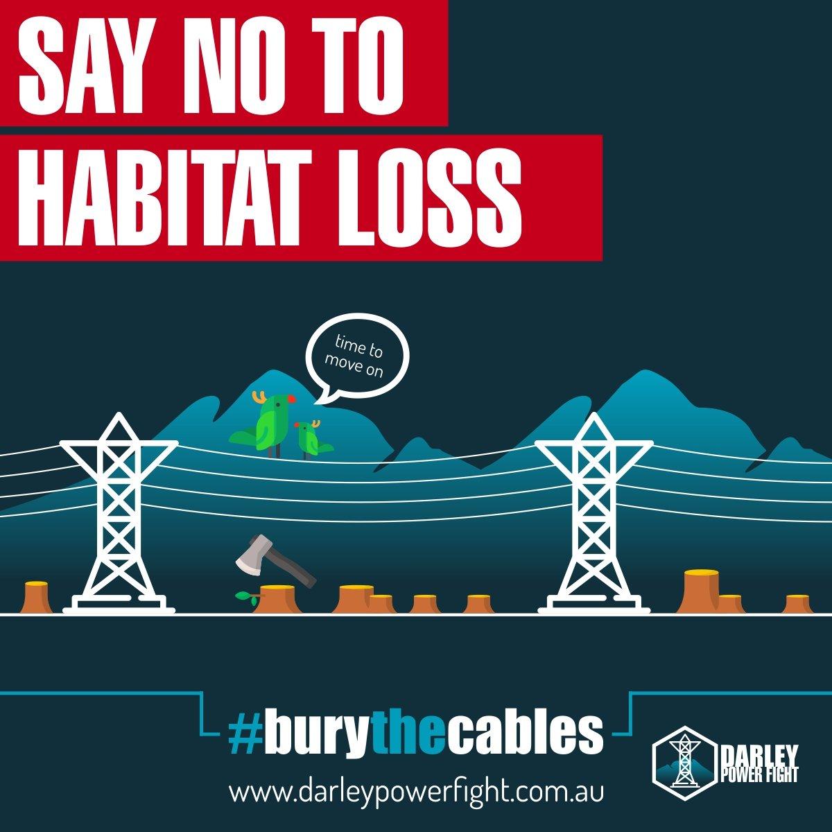 Habitat Loss Darley Power Fight